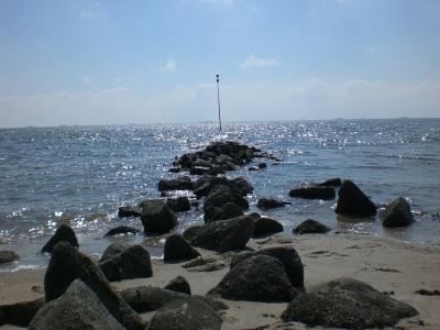 Buhne Stein Strand Nordsee