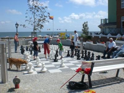 Sandwall Wyk Foehr Schach