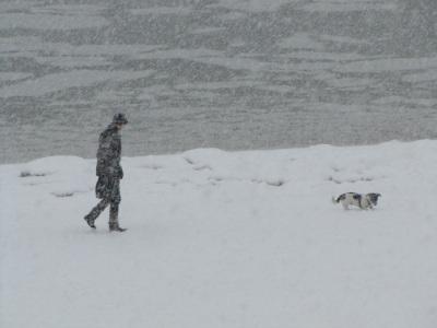 Schneetreiben Strand Föhr