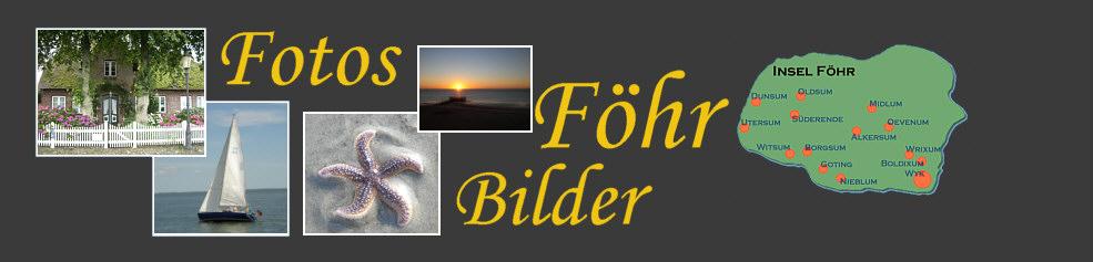 Foto Nordsee Insel F�hr
